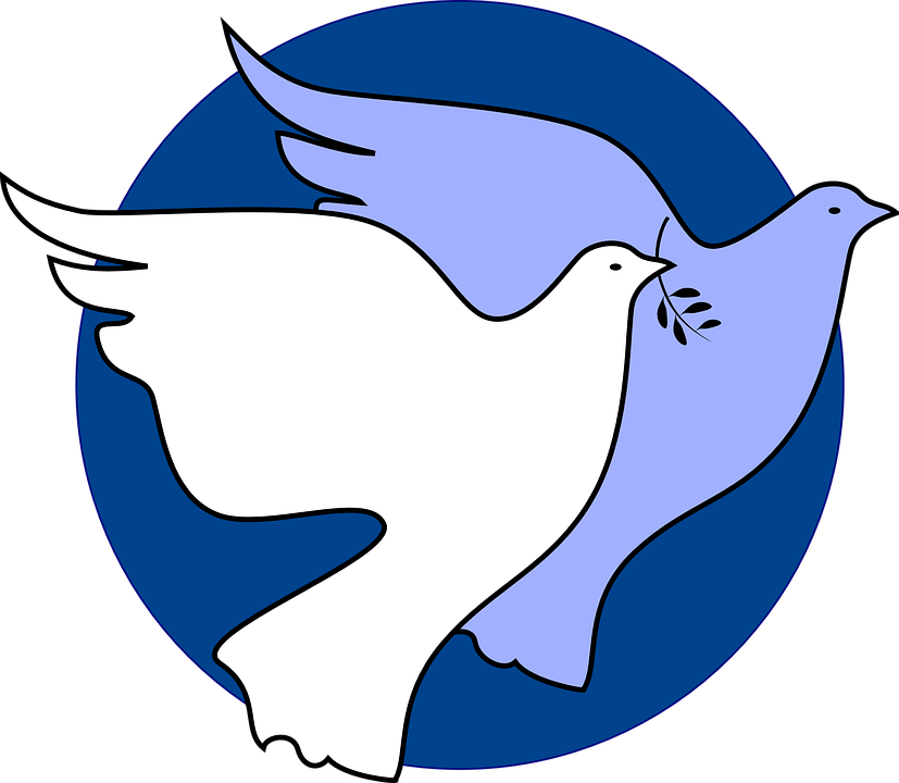 Dove Peace Unity Free Vector Graphic On Pixabay