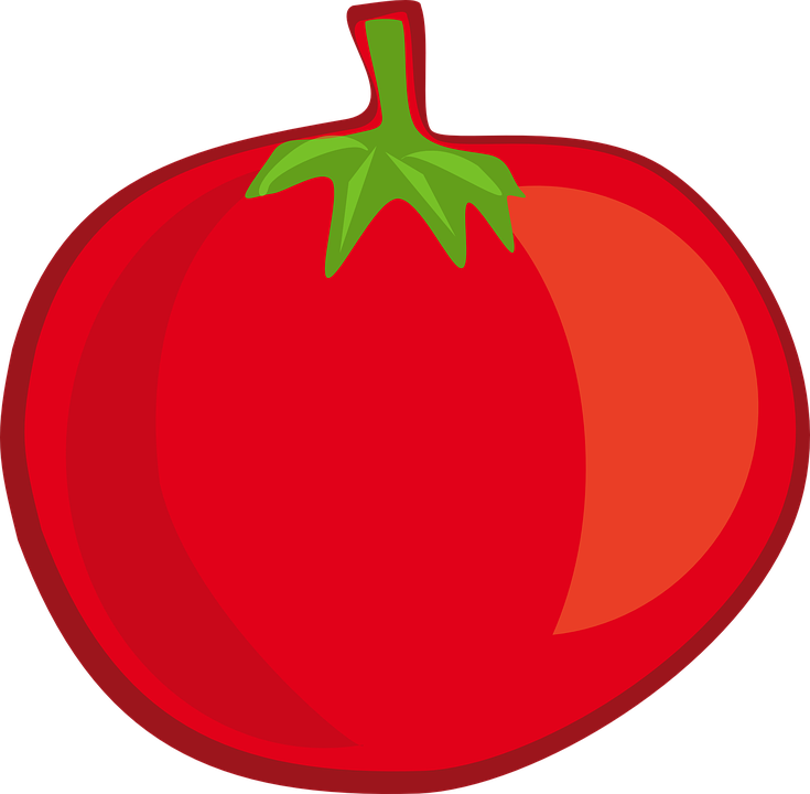 Tomato Fruit Vegetable · Free vector graphic on Pixabay  Vector