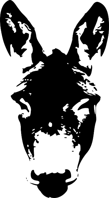 donkey face head 183 free vector graphic on pixabay
