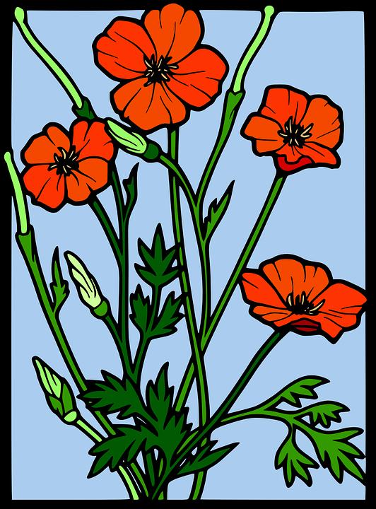 Apiun Bunga Dekoratif Gambar Vektor Gratis Di Pixabay