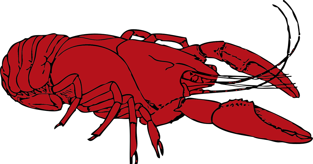 Lobster Crustaceans Red Free Vector Graphic On Pixabay