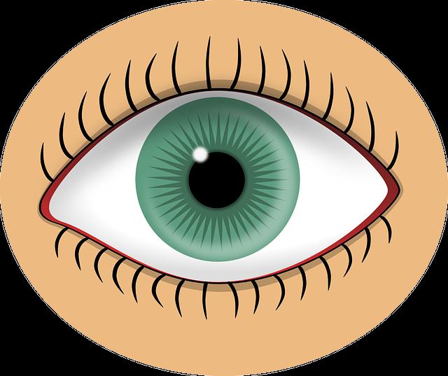 Ojo Verde Alumno · Gráficos vectoriales gratis en Pixabay