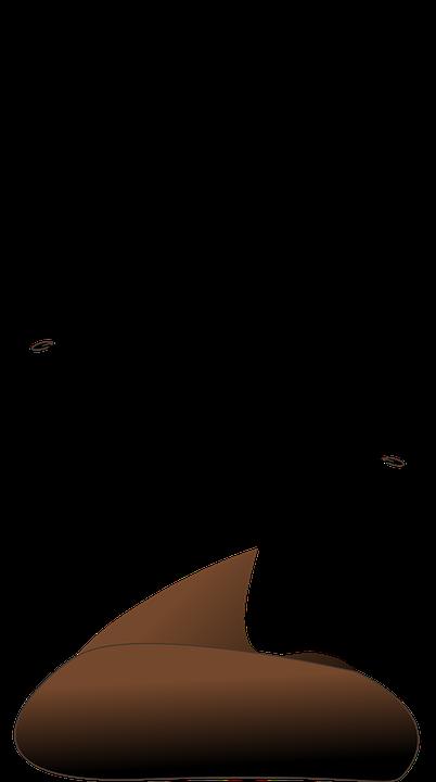 Kot Riechen Exkremente Kostenlose Vektorgrafik Auf Pixabay