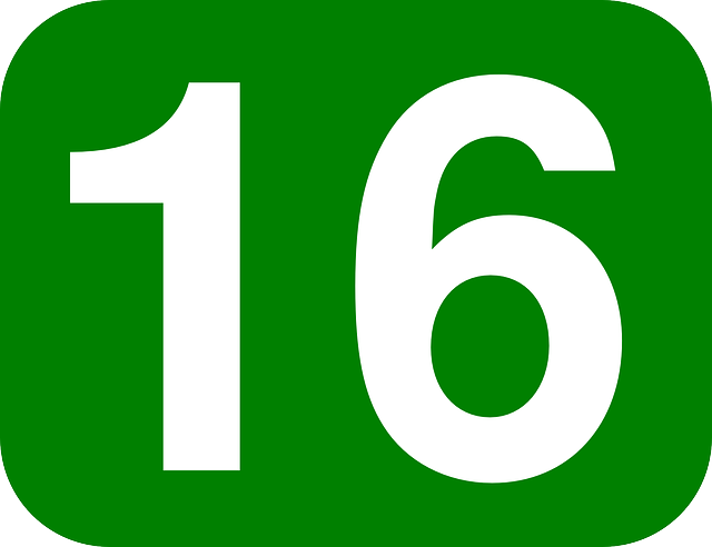 Free Vector Graphic: Number, 16, Rounded, Rectangle