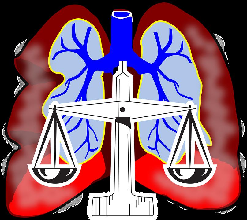 Keuhkot, Kaavio, Lentoliikenteen, Järjestelmän