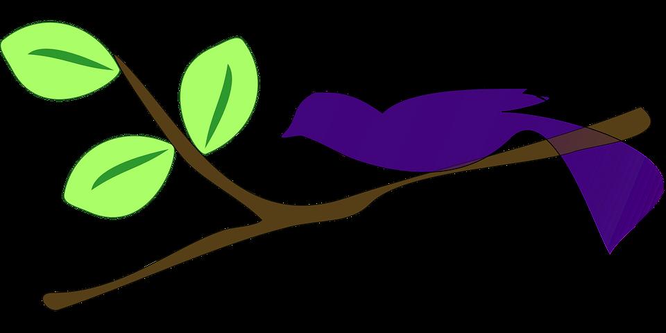 Ave Rama Árboles · Gráficos vectoriales gratis en Pixabay
