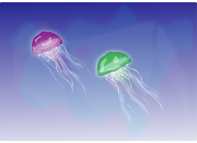 free vector graphic jellyfish tentacles swimming sea