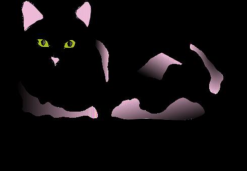 Čierny sex MOV