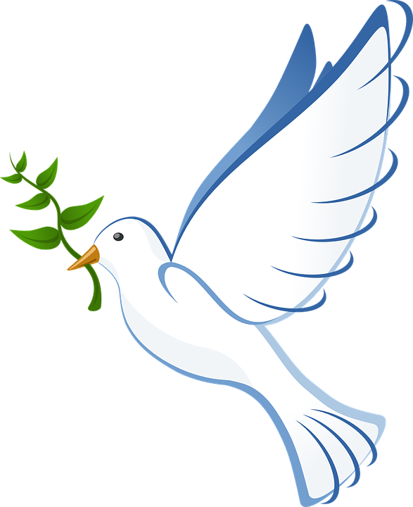 Free vector graphic Dove Flying Peace Olive Branch Free
