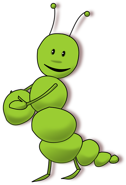 Caterpillar Insect Bug Free Vector Graphic On Pixabay