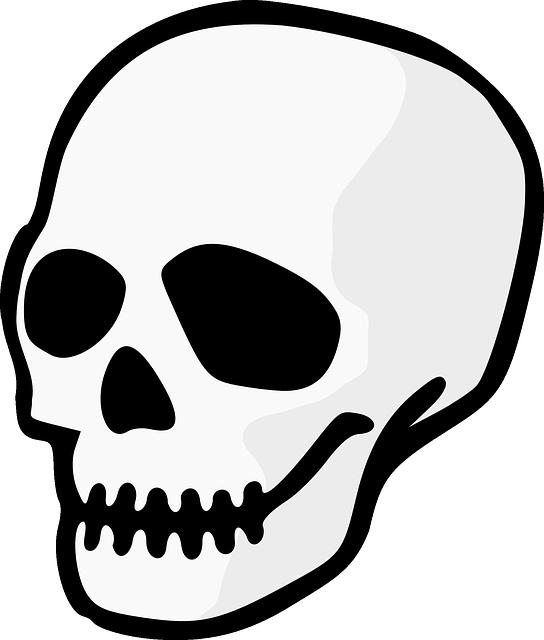 skull head dead free vector graphic on pixabay rh pixabay com cartoon skeleton head template Cute Skeleton Head