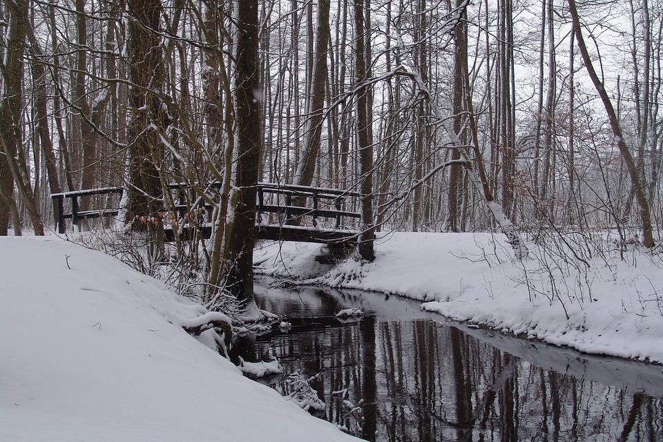 gratis foto sneeuw bos brug sneeuwlandschap gratis