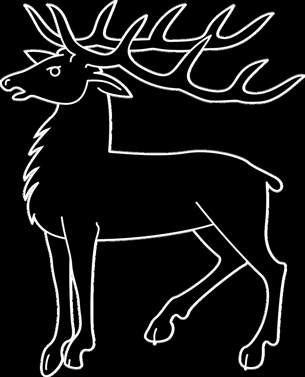 сможете черно белые картинки благородного оленя самые