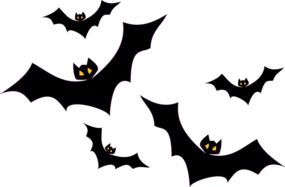 bats flying flight halloween black birds mammals - Halloween Black And White