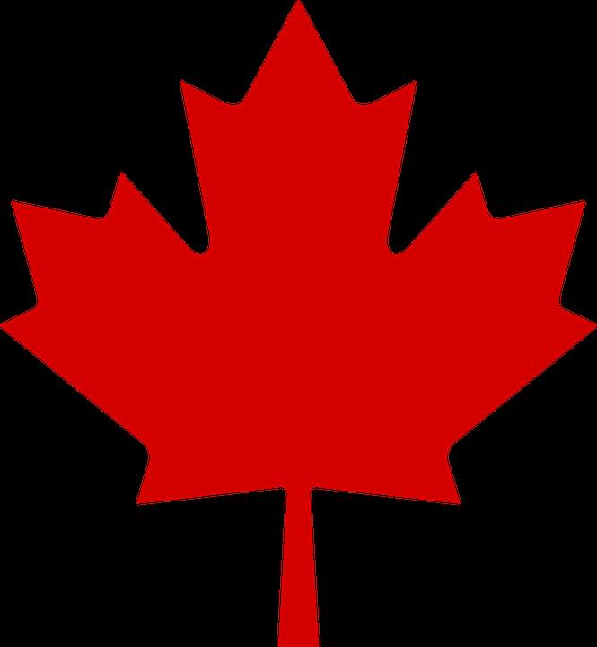 Immagine vettoriale gratis canadese acero foglia - Foglia canadese contorno foglia canadese ...