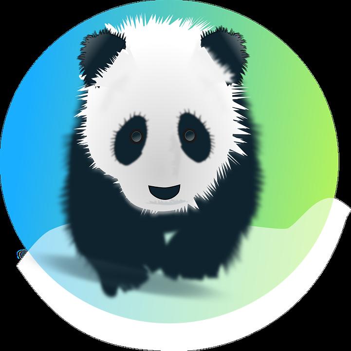 Panda Bear Giant · Free vector graphic on Pixabay