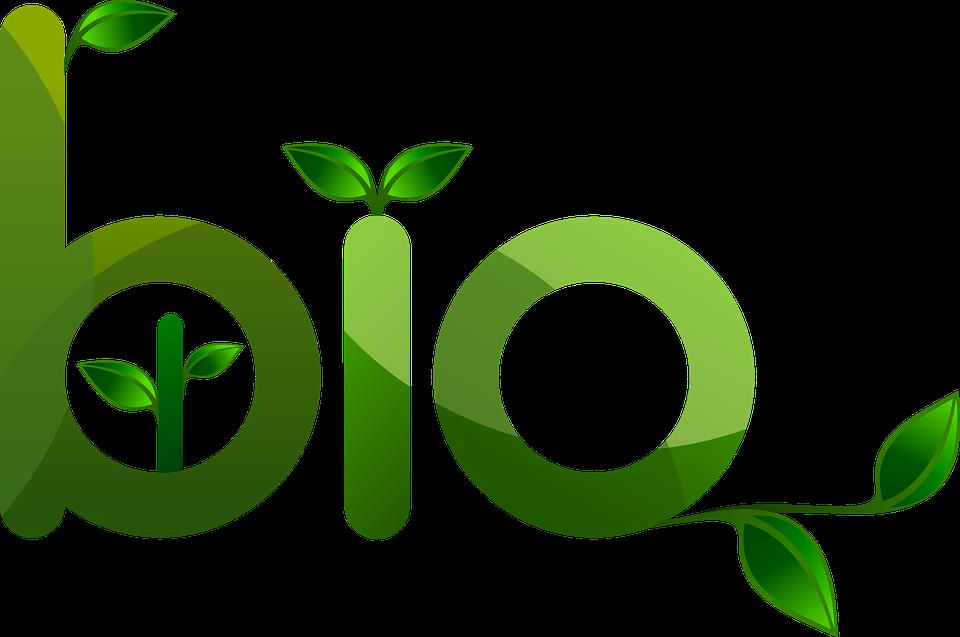 Bio, Amicale, Environnement, Plantes, Éco, L'Écologie