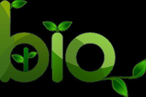 bio żywność ekologiczna