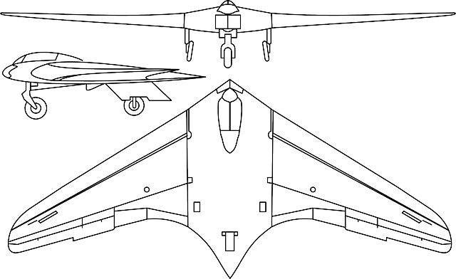 free vector graphic  stealth fighter  delta wing - free image on pixabay