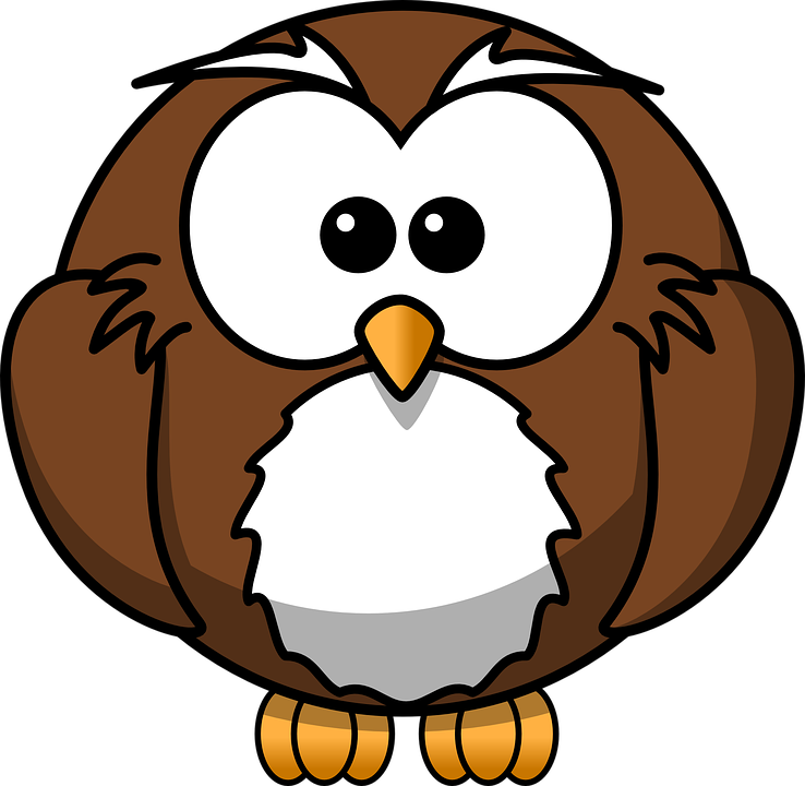 Owl Bird Brown Free Vector Graphic On Pixabay