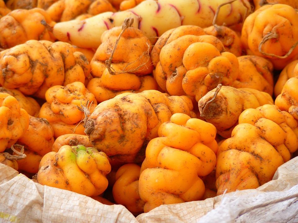 Di Patate, Patate, Perù, Cibo, Giallo, Arancione