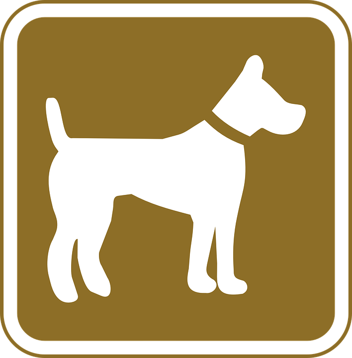 Dog, Pets, Allowed, Tourist, Pet, Allows, Pictogram