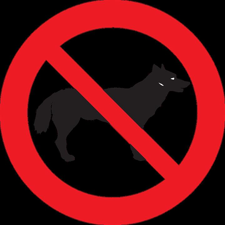 Dogs Not Allowed In Australia
