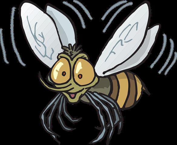 Днем рождения, картинка с мухой для детей