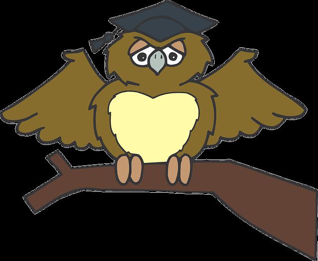 Первым, прикольные картинки мудрой совы