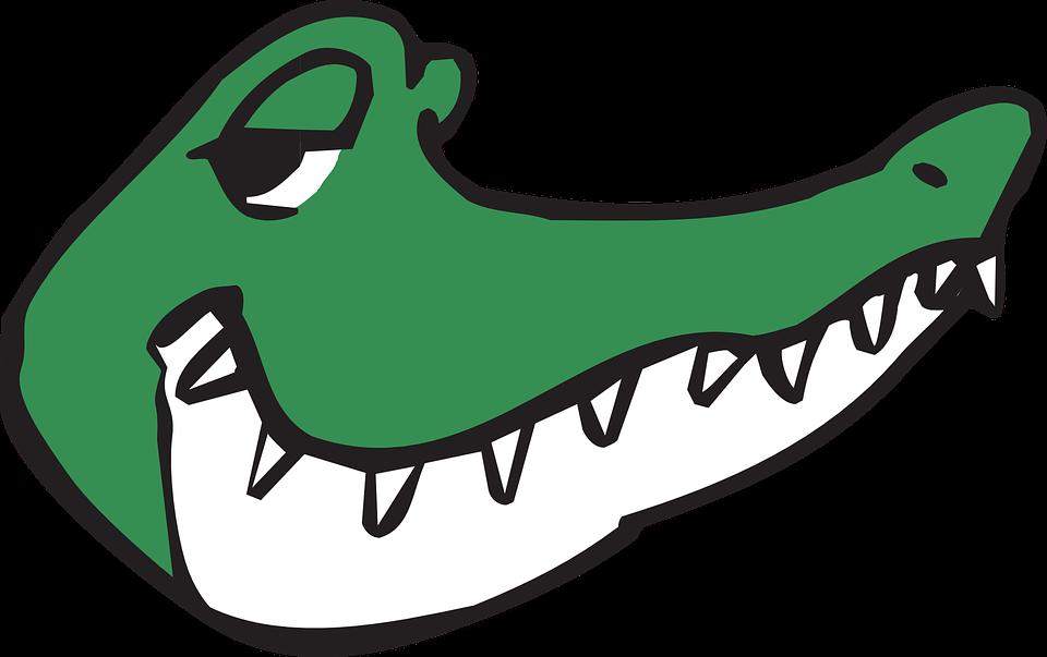 Alligator Head Smile · Free Vector Graphic On Pixabay