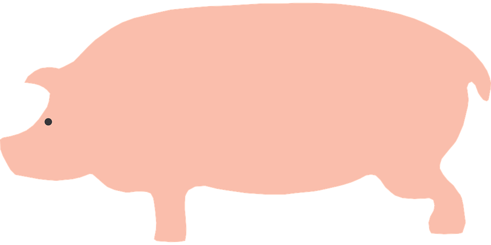 Pig Animal Pink Farm Barn Eye Silhouette
