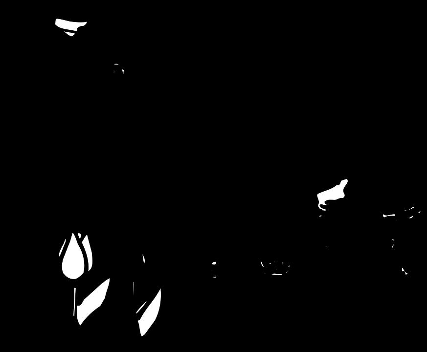 Laleler Cicek Ciftlik Pixabay Da Ucretsiz Vektor Grafik