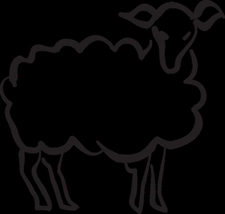 agneau stylis u00e9s style des  u00b7 images vectorielles gratuites sur pixabay