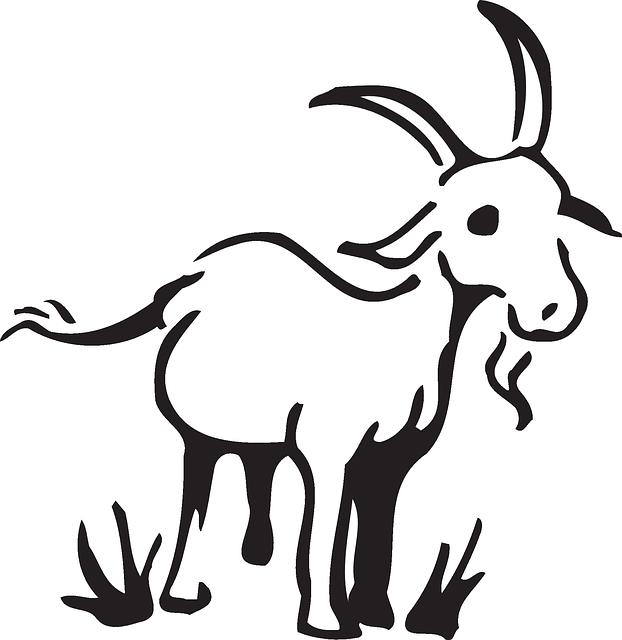 Barn Farm Grass - Free vector graphic on Pixabay