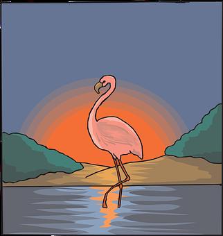 Flamingo, Water, Pink, Sky, Bird, Sunset