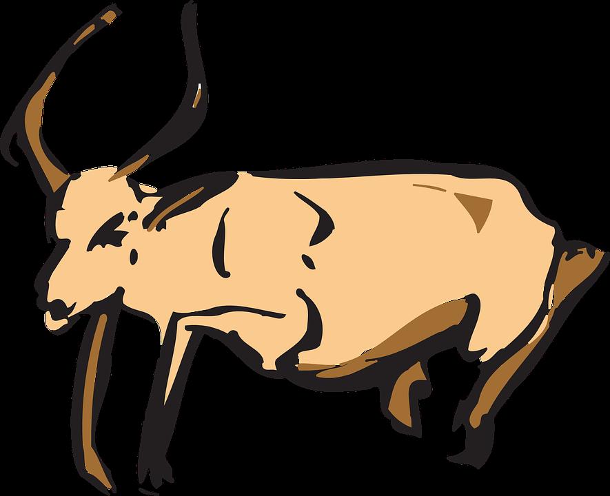 antelope animal horns free vector graphic on pixabay rh pixabay com