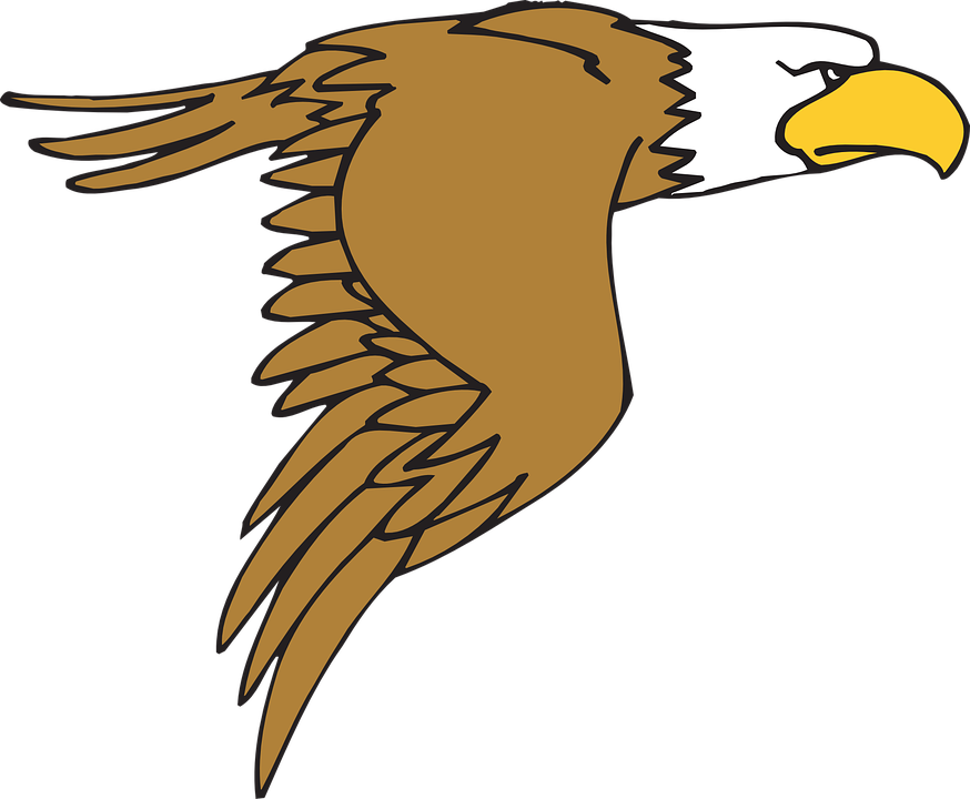 eagle bird flying free vector graphic on pixabay rh pixabay com Birds Flying From Feather Drawing Birds of a Feather Tattoo