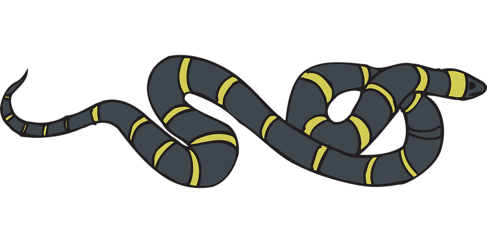 kostenlose vektorgrafik schlange schwarz gelb gestreift kostenloses bild auf pixabay 46151. Black Bedroom Furniture Sets. Home Design Ideas