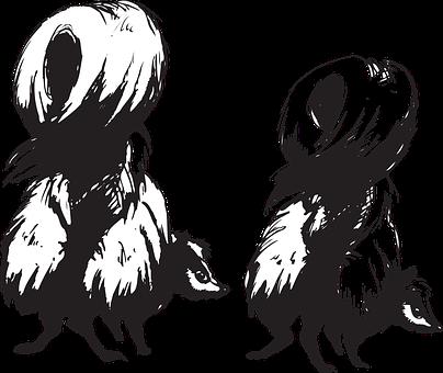 Skunks, Animals, Back, Defense, About