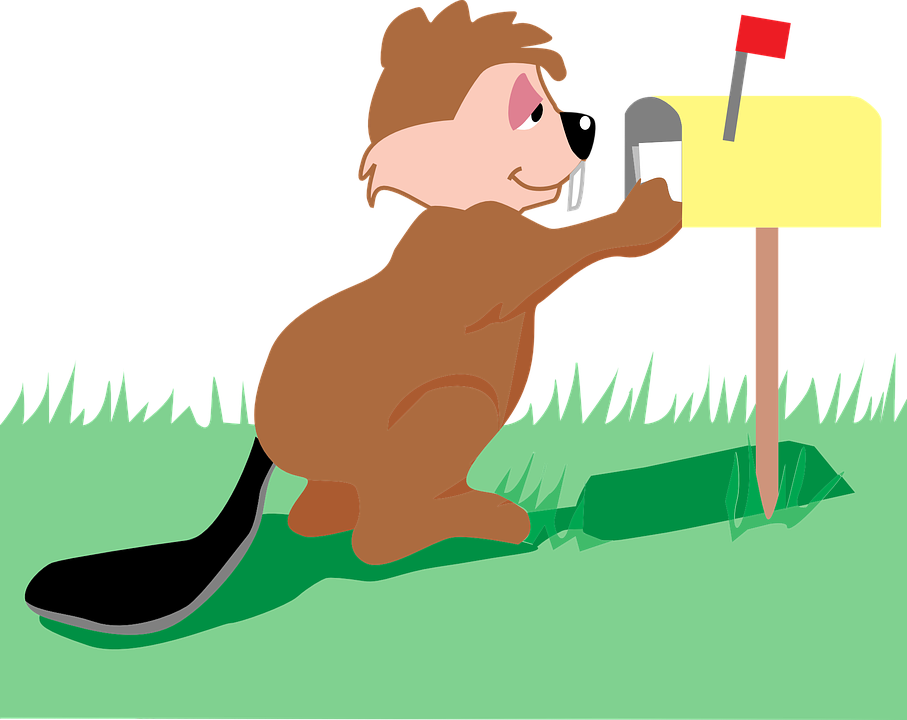 free vector graphic mail box beaver post letter
