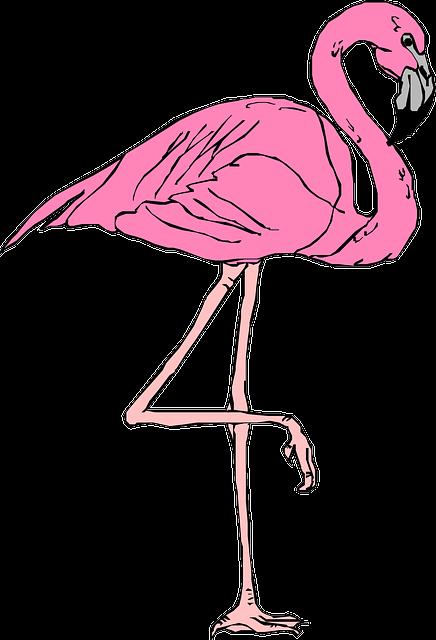 Flamingo Pink Bird · Free vector graphic on Pixabay