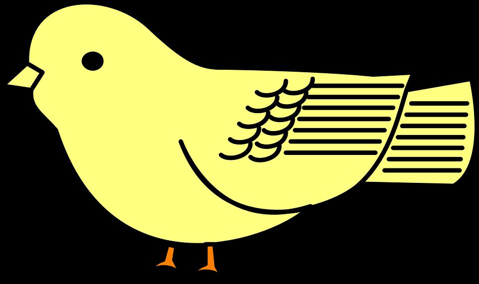 Baby Bird Yellow · Free vector graphic on Pixabay