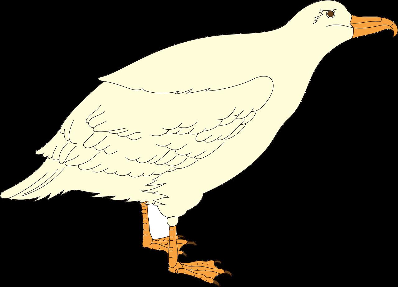 выкройка птицы чайки