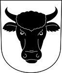 bullhead, steer, bull