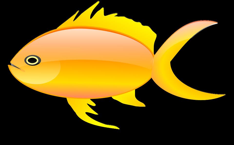 gambar gambar bagus: Gambar Animasi Ikan Mas