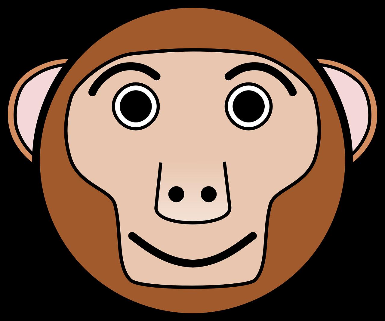 Картинки мордочка обезьяны