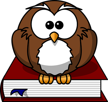 Owl, Bird, Book, Wise, Nature, Character