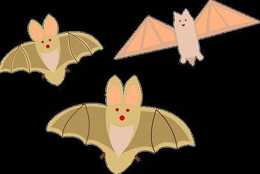 Halloween Bats Birds Mammals Vampires Grou