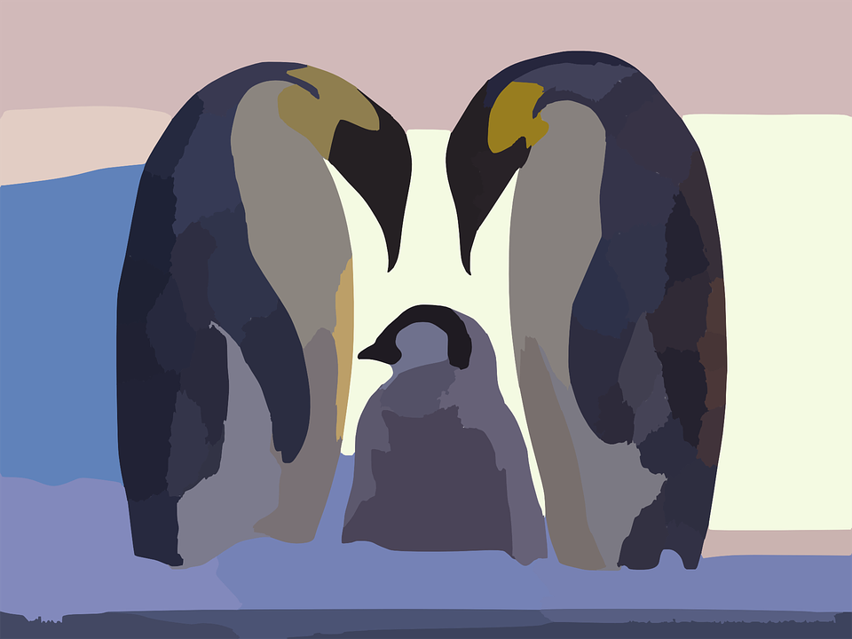 Penguins Angry Woman No Background