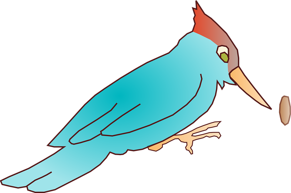 Woodpecker Blue Bird Free Vector Graphic On Pixabay